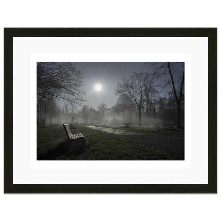 Monza Park photograph by Lou Boileau